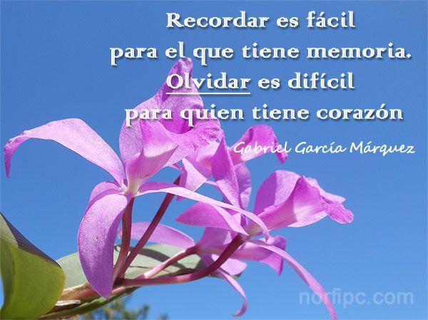 Recordar es fácil para el que tiene memoria. Olvidar es difícil para el que tiene corazón. Frase de Gabriel García Márquez