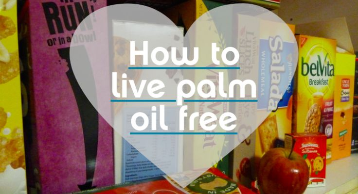 how to live without palm oil