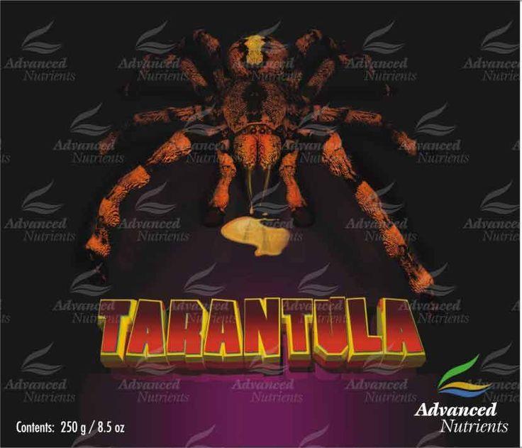 Tarantula es un nuevo descubrimiento para medios de cultivo en suelo o hidroponía, una mezcla de bacterias compuesta por 57 microorganismos, incluyendo bacilos,estreptomicetos, actinomicetos y pseudomonas.