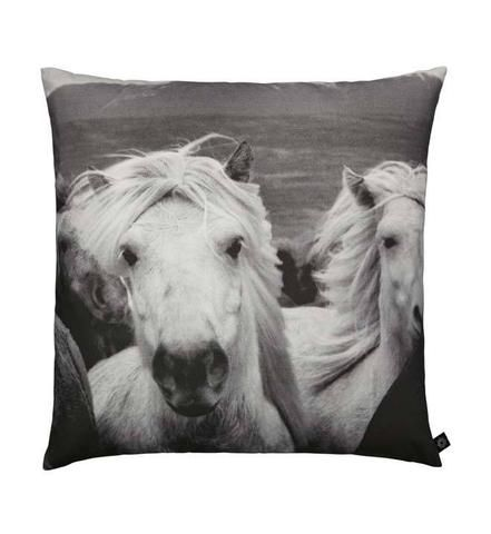 BY NORD Icelandic Horses Floor Cushion BY NORD Icelandic Horses Floor Cushion 80x80, Homewares - By Nord, Mora Approved - 1