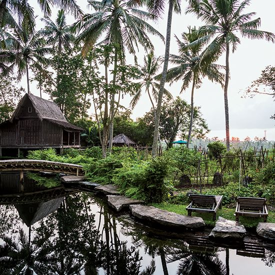 Five luxurious resorts in Bali, from a food-focused cliftop resort to an eco-resort with a yoga pavillion.