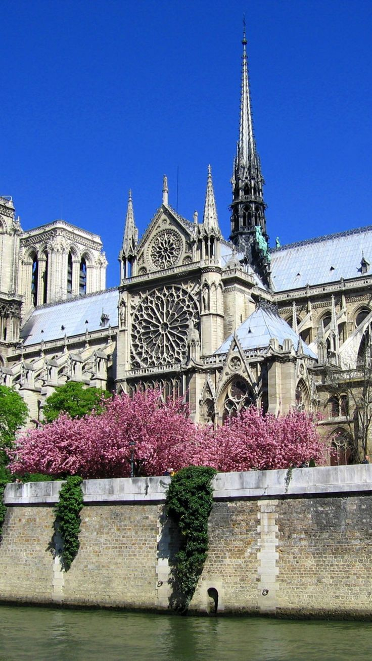 notre-dame de paris, cathedral, paris, france