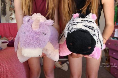 Qotd: do you have a pillow pet?♡ I have a bumble bee ♾