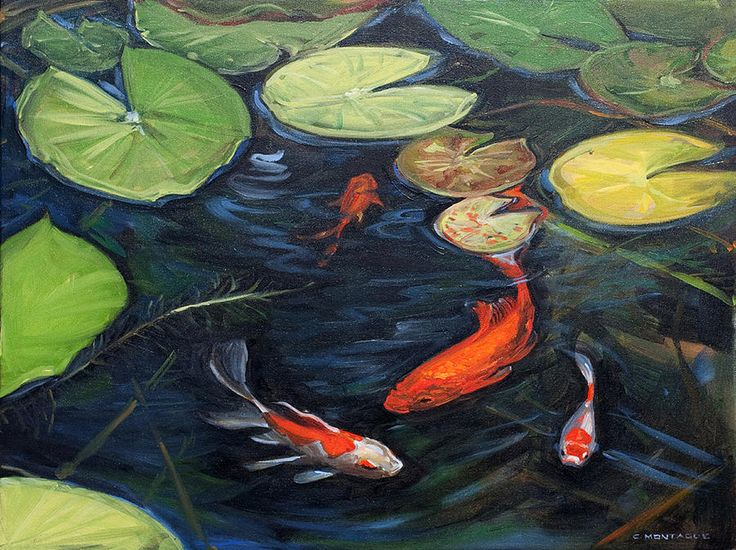 Koi pond water lilies oil painting on canvas fish for Koi fish water