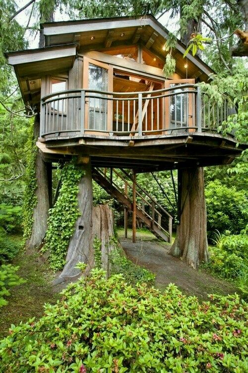 another cool tree house by cwhaticreate.I would love to live in a treehouse  one day! (maybe after I am retired?) but that would be awesome! by sophia.