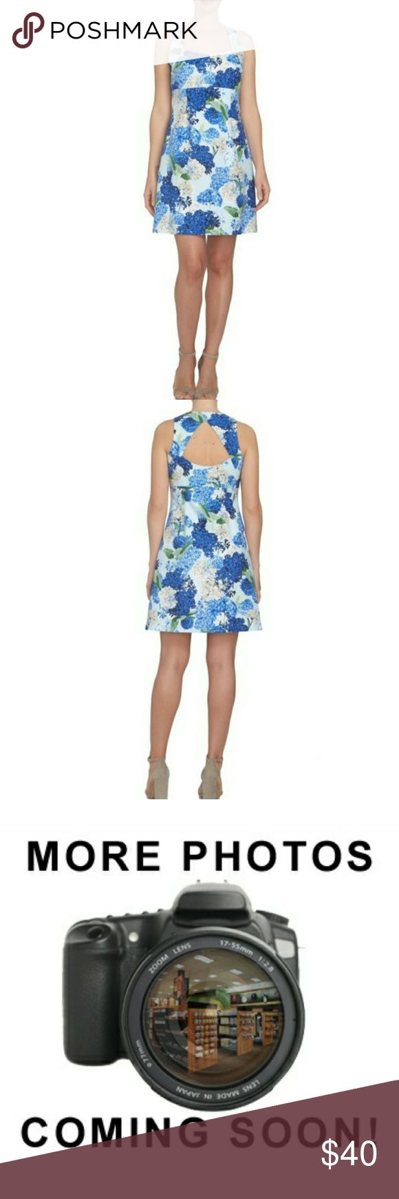 """CeCe by Cynthia Steffe Fit & Flare Dress DetailsBold hydrangea blossoms lend their vivacious botanical beauty to a sweet sundress with a defined waistline and flirty back cutout. - 35 1/2"""" length (size 0) - Square neck - Sleeveless - Lined - 97% cotton, 3% spandex - Machine wash, tumble dry - Imported - Point of View  Additional Info True to size. Cynthia Steffe Dresses Mini"""