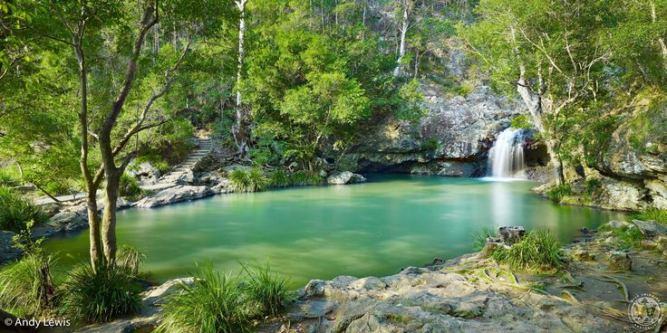 The pool above Kondalilla Fallscould be the perfect swimming hole: with the pool behind you, you look out over the top of the main waterfalland acrossto a panoramic vista of nothing but trees.