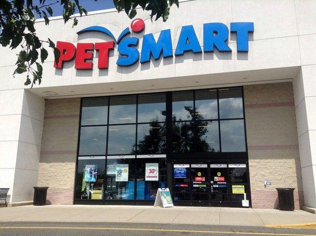 Petsmart Recalls Batch Of Canned Dog Food Petsmart Petsmart Dog
