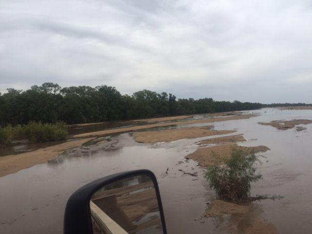 Looks like the Gulf has got it's first signs of rain! A couple of areas recorded 125mm yesterday. Let's hope more is to follow. Gilbert river pictured.
