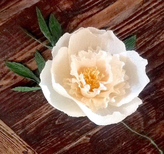 Peonia crema in carta crespa 180 premium Lerosedimari