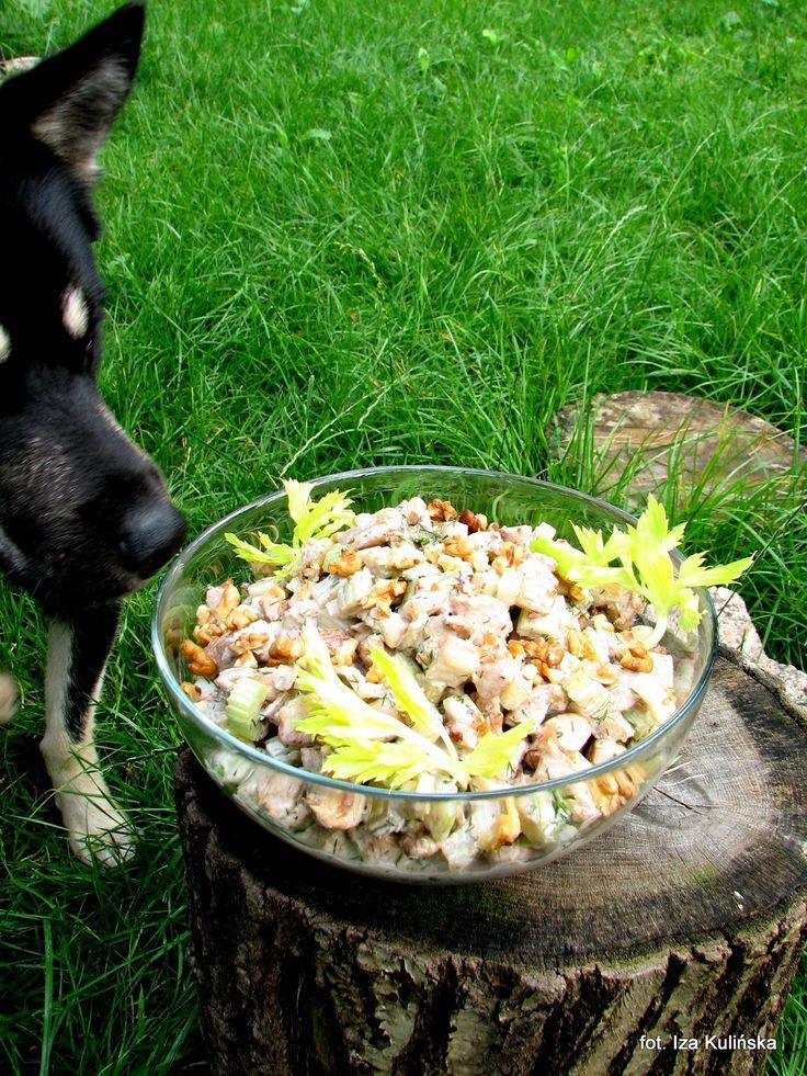 Smaczna Pyza: Sałatka z kurczaka, z selerem naciowym i orzechami