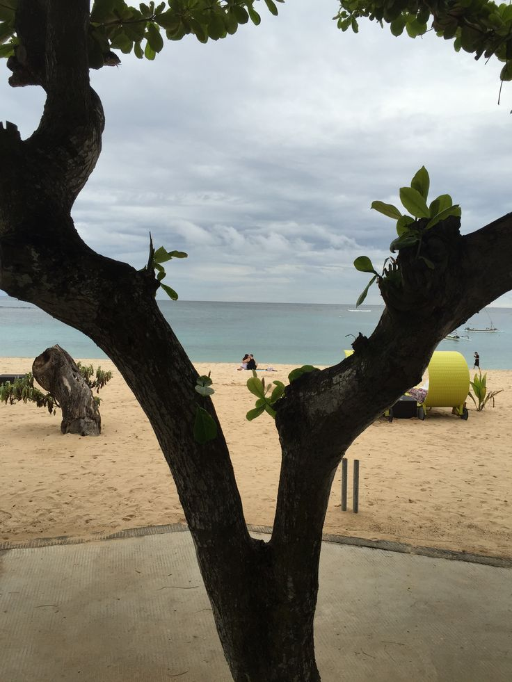 I call this the love tree, so nice seeing a young couple kissing on the Nusa Dua beach