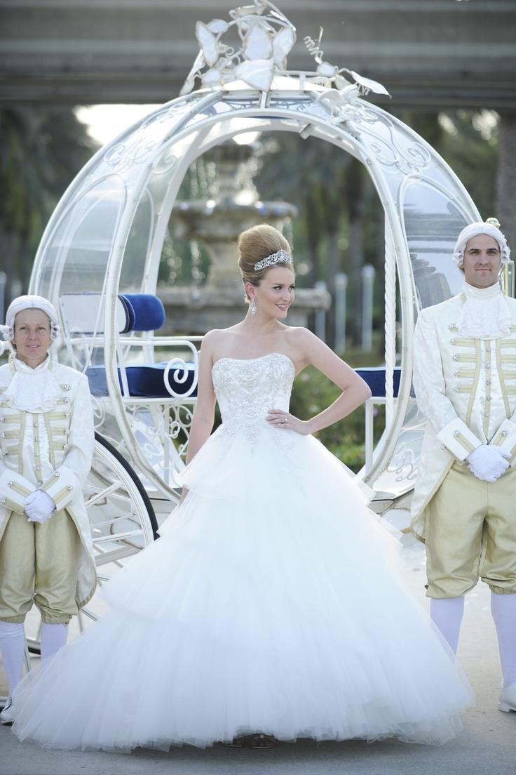 Disney Themed Wedding #2 :: Cinderella (Blue and Silver)