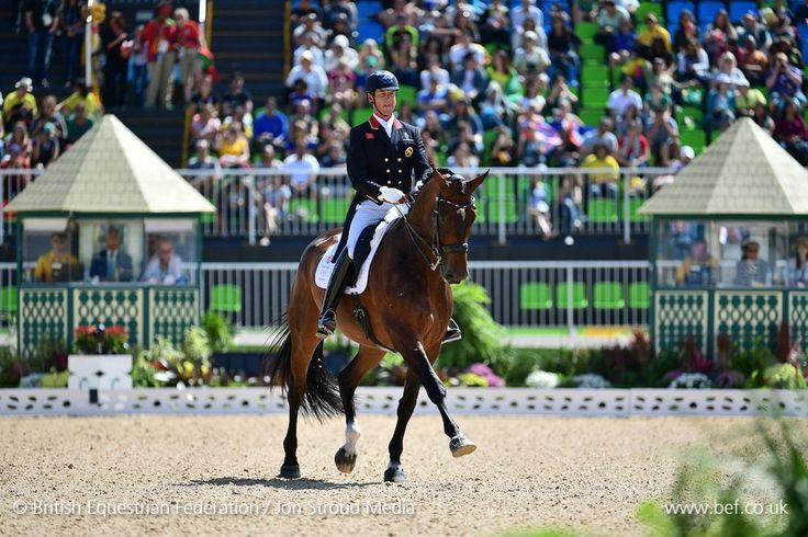 The master at work, how luck is Team GB to have Carl Hester ! Equestrian Team GBR (@TeamGBR) | Twitter #equestriandressage