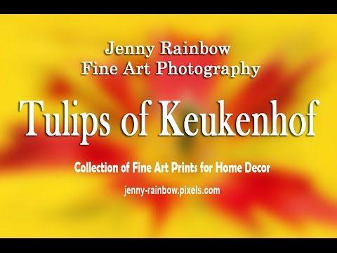 Tulips of Keukenhof. Jenny Rainbow Fine Art Photography