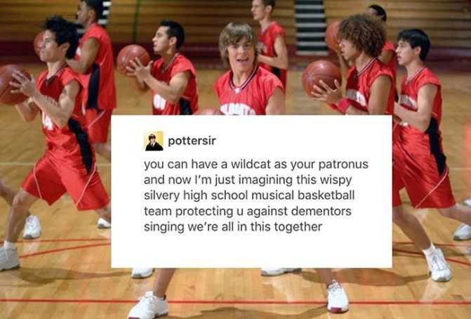 OK BUT LIKE, MY PATRONUS IS A WILDCAT, I DONT THINK YOU UNDERSTAND