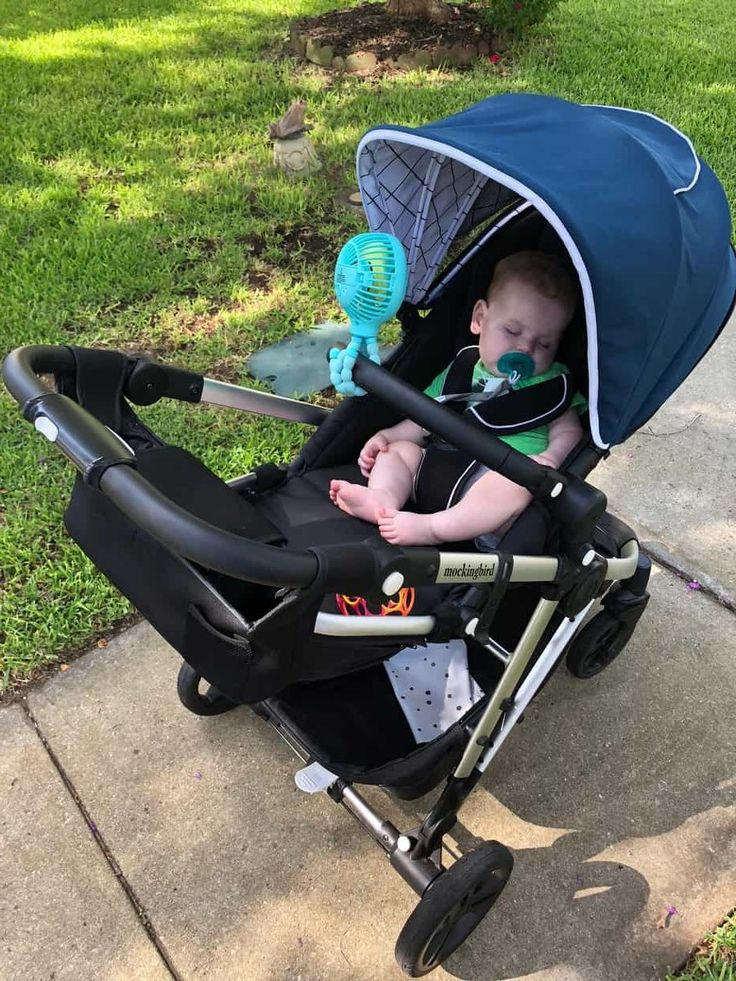 Mockingbird Stroller Review Baby strollers, Vista