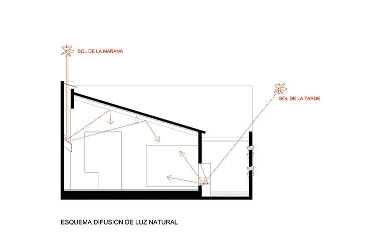 Estudio Elgue - Proyecto - Esquema difusión Natural 2