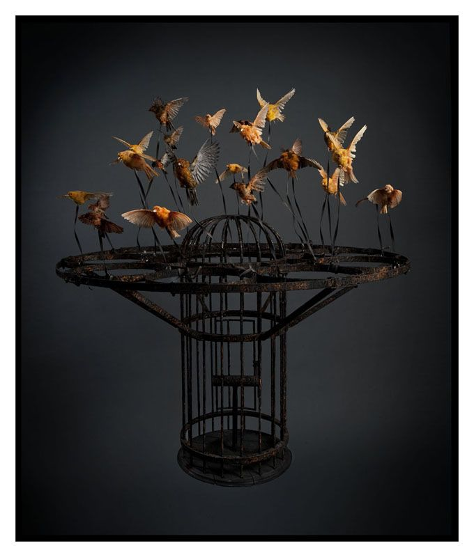 """""""Systemic Inflammation"""" (2010) by Polly Morgan. Taxidermy, steel, leather."""