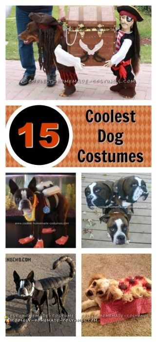 dog-halloween-costume-ideas-collage