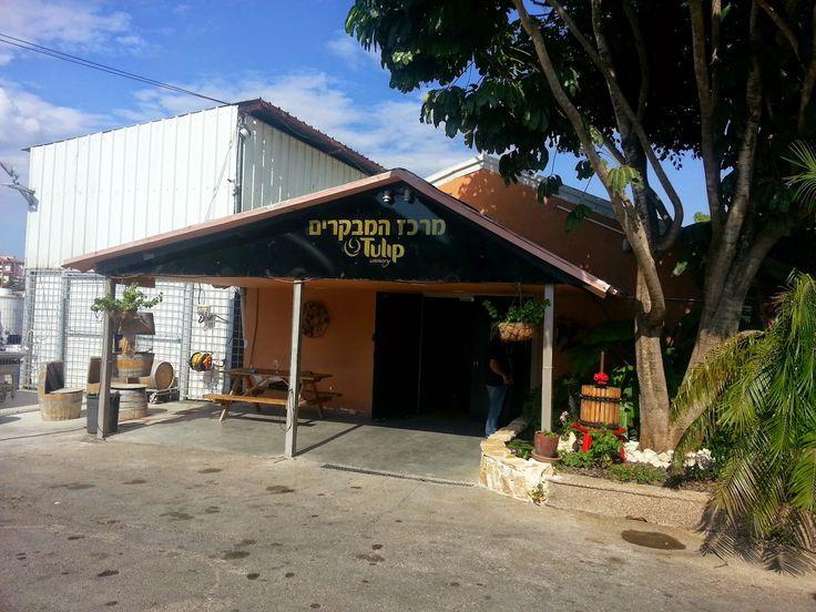 Tulip Winery at K'far Tkvah, Kiryat Tiv'on in  חיפה