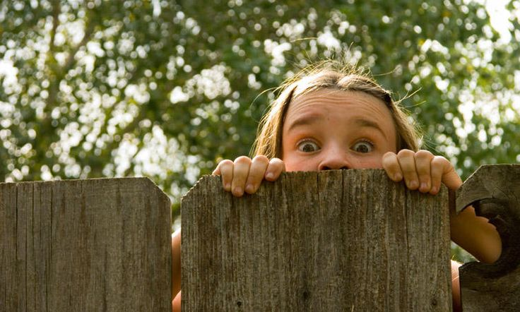 Vous l'aurez compris, tout le monde a besoin de se retrouver en pleine nature, les enfants peut-être encore plus que les adultes !