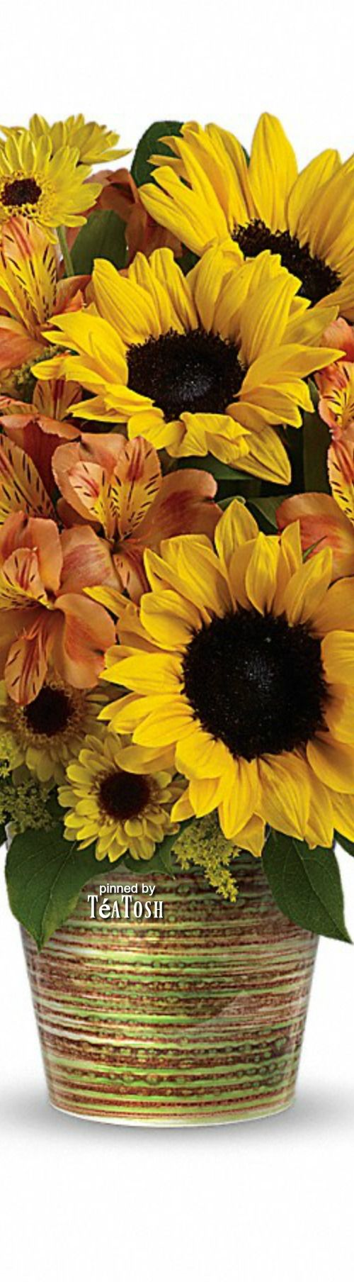 ❈Téa Tosh❈ Grand Sunshine Bouquet