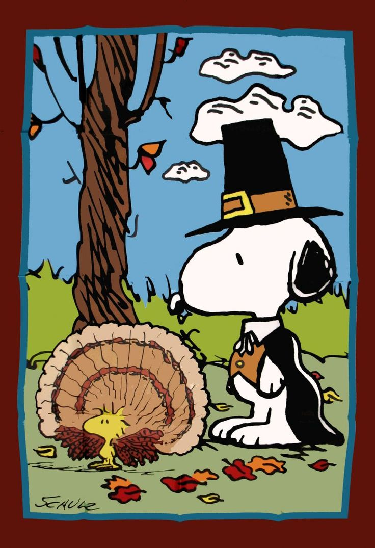 67 Best Thanksgiving Images On Pinterest Charlie Brown