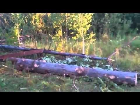 Loading logs on trucks Russian style