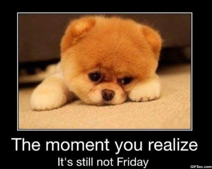 It's Almost Friday Meme | Friday - Funny Pictures, MEME and Funny GIF from GIFSec.com