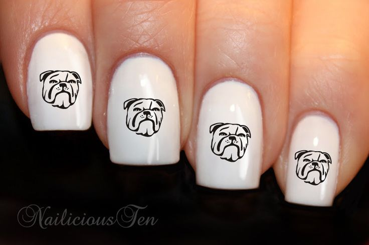 NRL Bulldogs Colours Nail Wraps Art Water Transfer Decal by azzai on Etsy