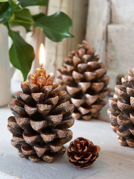 Pine cone candles, but I could never burn them!