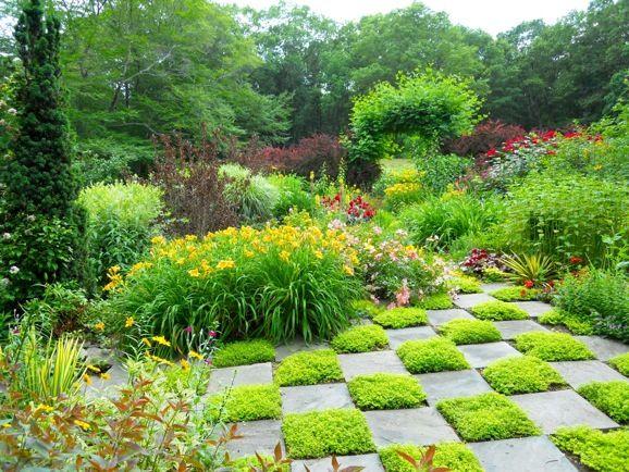 Thyme planted checkerboard flower garden ideas for Checkerboard garden designs