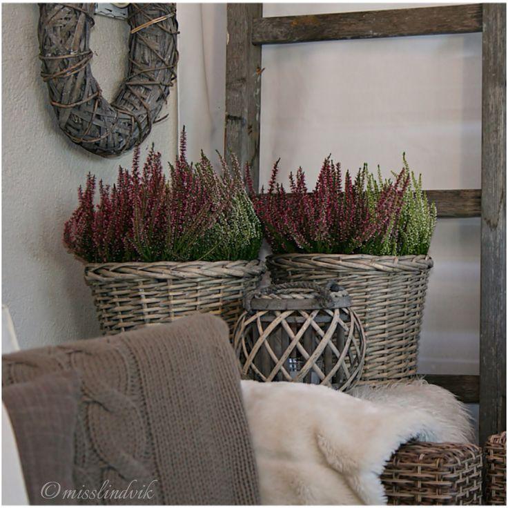 Høst, outdoorliving, rotting, interiør, misslindvik, myhome, veranda, interior