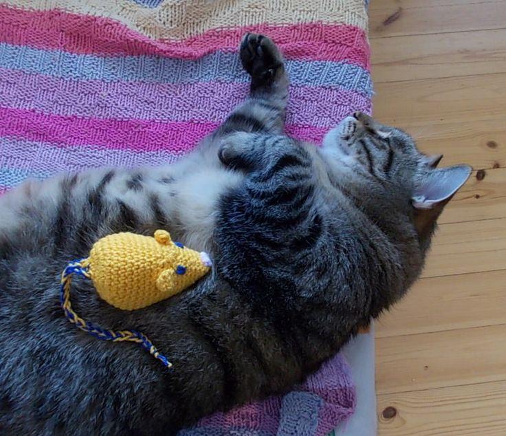 Hiirulainen minun Santulle <3 A mousie for my cat Santtu!