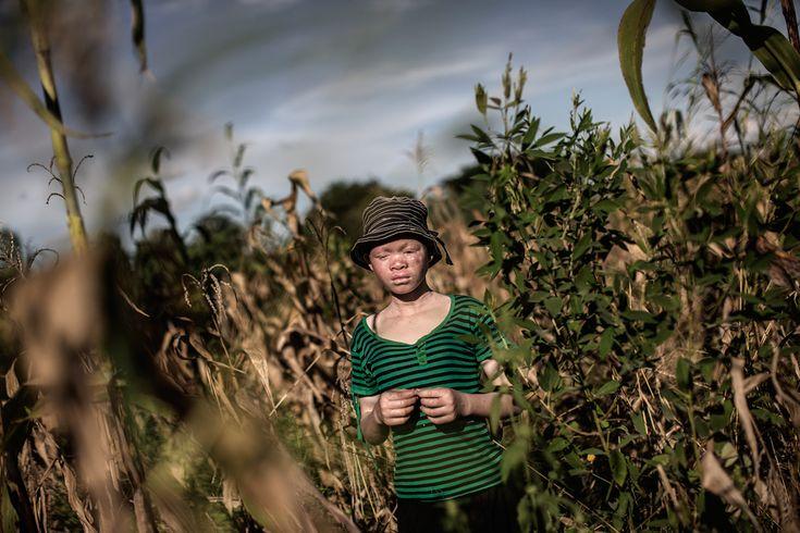 Catherine Amidu, 12 anni, in un campo di grano a Nkole, nel distretto di Machinga. - (Gianluigi Guercia, Afp)