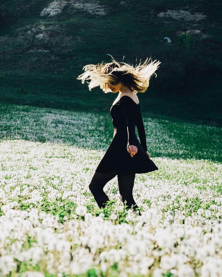 The dandelion fairy  make a wish and have it come true