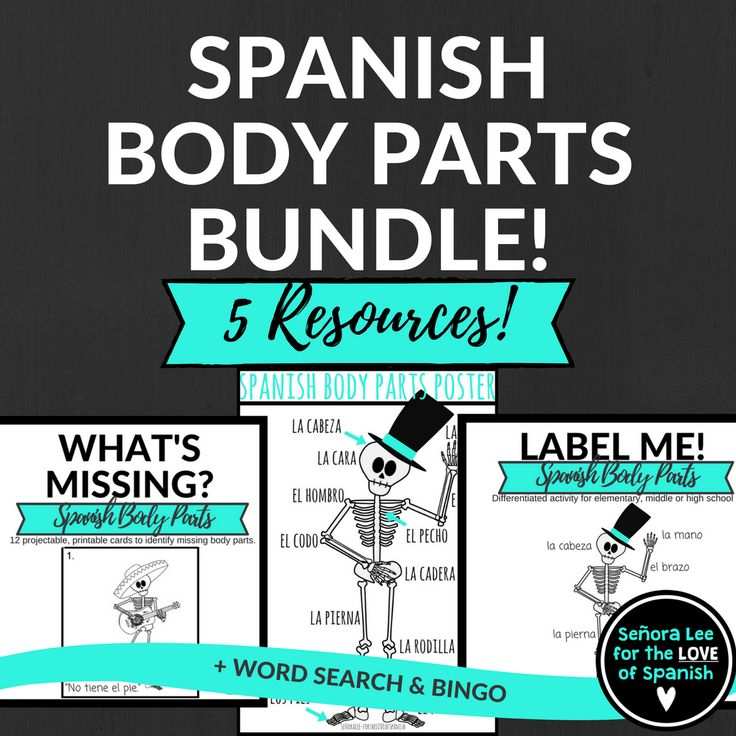 Learn spanish body parts games