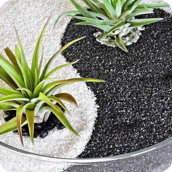 YIN YANG black-white sand glass terrarium - zen garden, home decor, centerpiece, housewarming, office, birthday, anniversary gift.