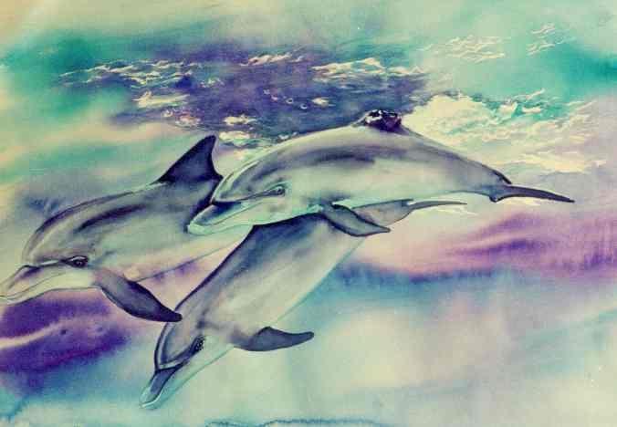 #Art #Dolphin #Dolphins