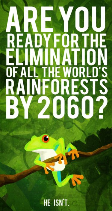 If we continue at the rate at which we are going, it is estimated that all rainforests will be gone in less than 50 years.  Think about it. Act wisely.    You don't need to be a scientist to realize that something needs to be done. Make it a resolution to make decisions that the future will thank you for.