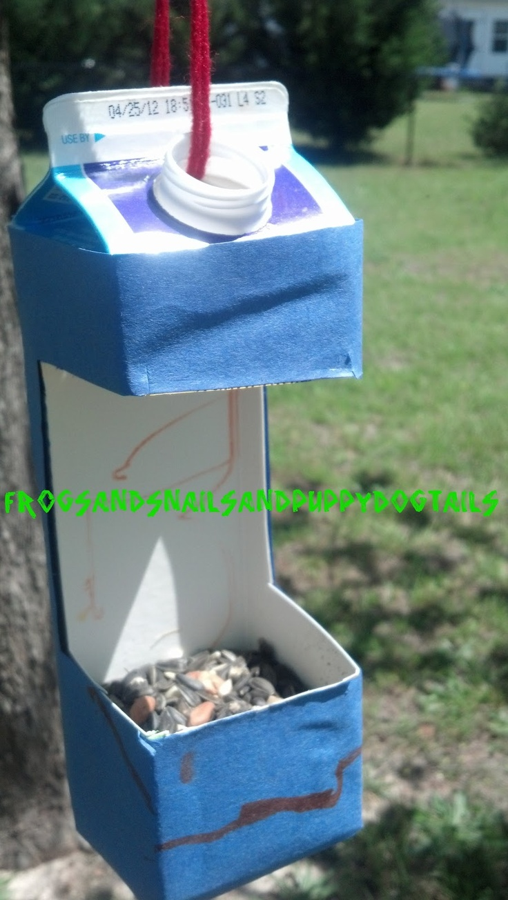 B is for birds lesson: Upcycled Bird Feeder