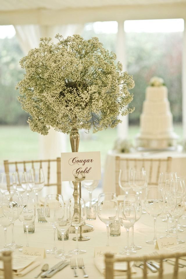 Gypsophila Wedding Centrepiece. Baby's breath might be cheaper than other flowers?