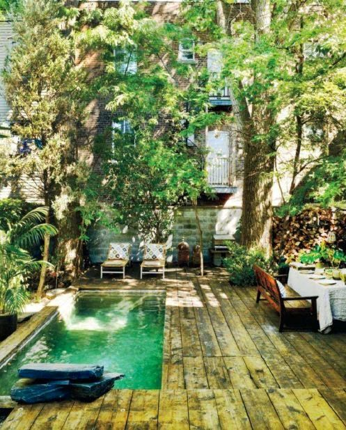Green pool in a Montreal courtyard