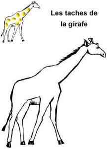 image les taches de la girafe en pâte à modeler: Grafisme, Girafe En, La Girafe