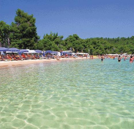 Evia island,Koukounaries beach - Aegean sea,Hellas