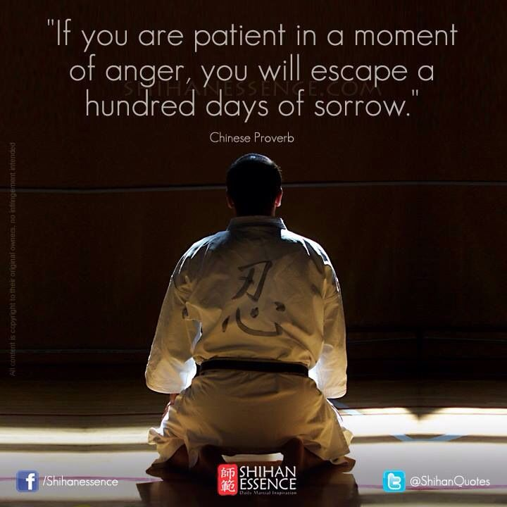 If you are patient in a moment of anger, you will escape a hundred days of sorrow ~ Chinese Proverb