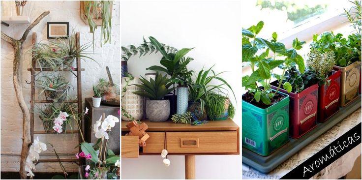 Te contamos cómo y por qué tienes que llenar tu casa de plantas y flores.
