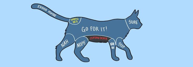 How To Pet Animals Illustrated In Diagrams #pets #to #adopt http://pet.remmont.com/how-to-pet-animals-illustrated-in-diagrams-pets-to-adopt/  How To Pet Animals Illustrated In Diagrams People (and pandas like us) on the internet love to write about animals they re adorable, friendly, beautiful, and lack many of the more negative personality traits that people are prone to. But what do you DO with them? While he won t tell you how to feed or care for your pet, blogger Adam Ellis has created a…