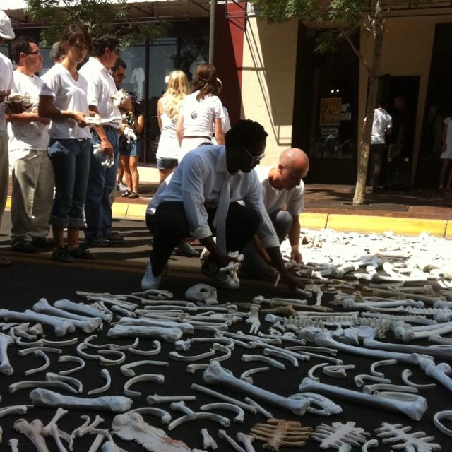 One Million Bones Event in Albuquerque to raise awareness of genocide. 50,000 ceramic and plaster bones laid down last Fall 2011.